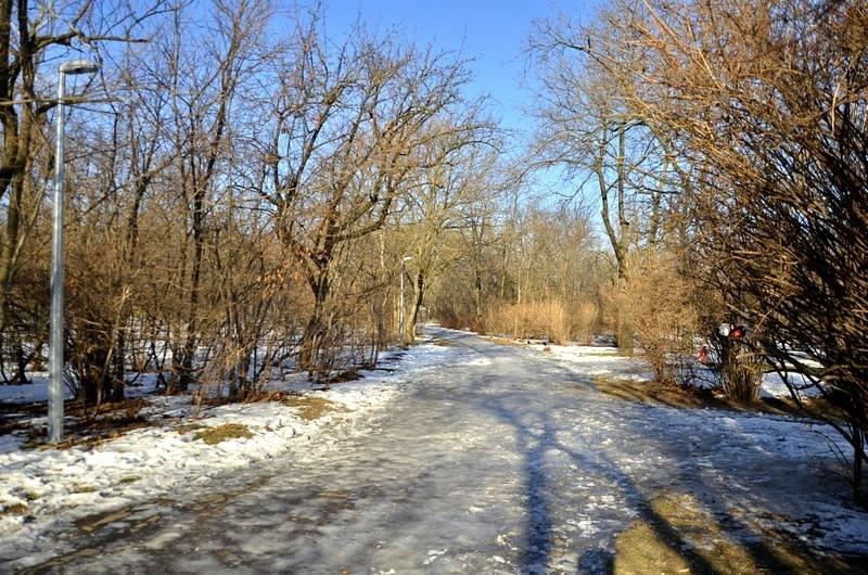Коммунальщики не расчистили аллеи одесского парка (ФОТО), фото-15