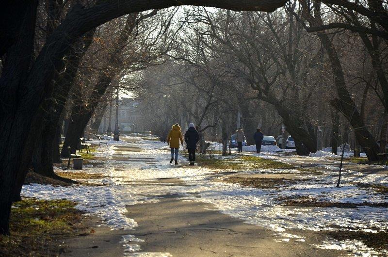 Коммунальщики не расчистили аллеи одесского парка (ФОТО), фото-4