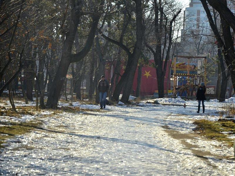 Коммунальщики не расчистили аллеи одесского парка (ФОТО), фото-16