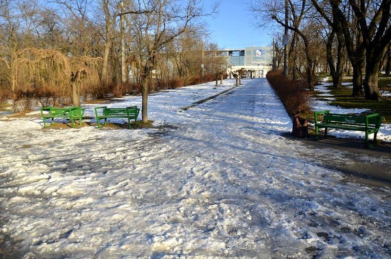 Коммунальщики не расчистили аллеи одесского парка (ФОТО), фото-7