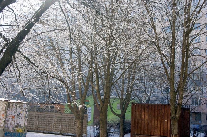 Одесса окунулась в зимнюю сказку (ФОТО), фото-9