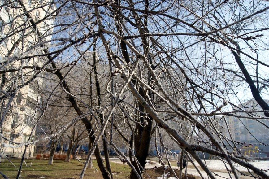 Одесса окунулась в зимнюю сказку (ФОТО), фото-10
