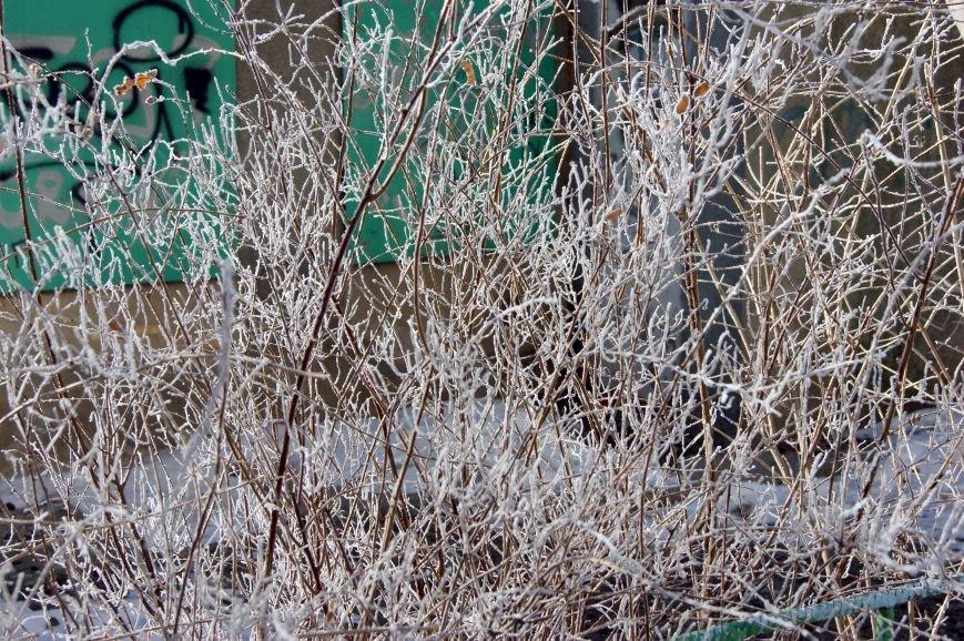 Одесса окунулась в зимнюю сказку (ФОТО), фото-8