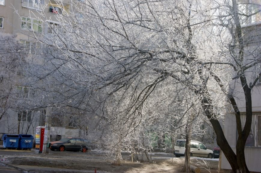 Одесса окунулась в зимнюю сказку (ФОТО), фото-5