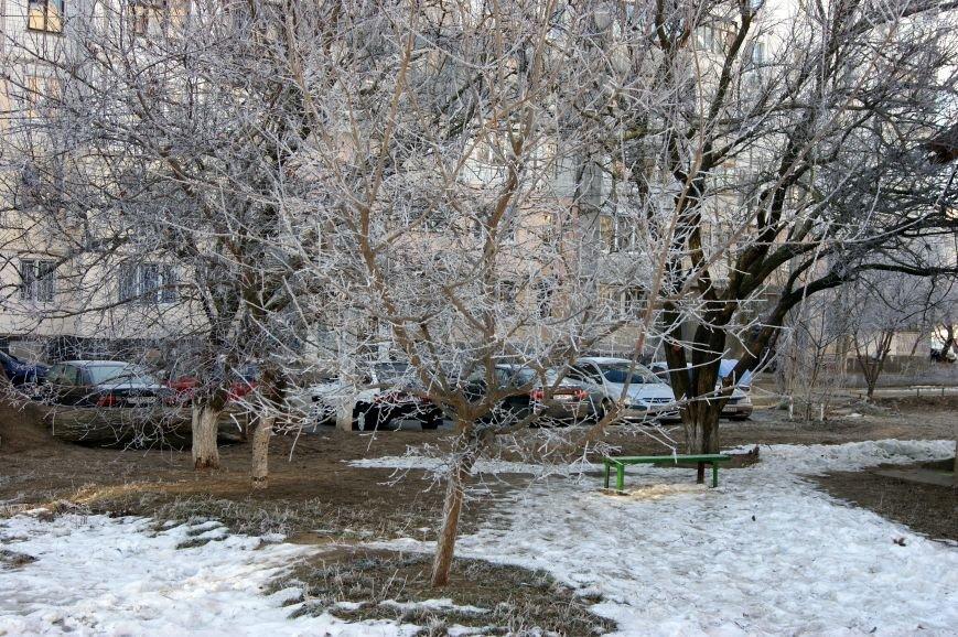 Одесса окунулась в зимнюю сказку (ФОТО), фото-6
