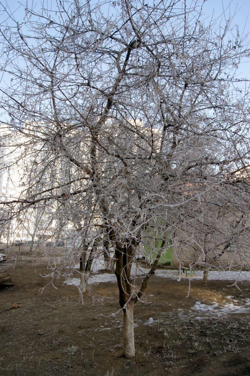Одесса окунулась в зимнюю сказку (ФОТО), фото-4