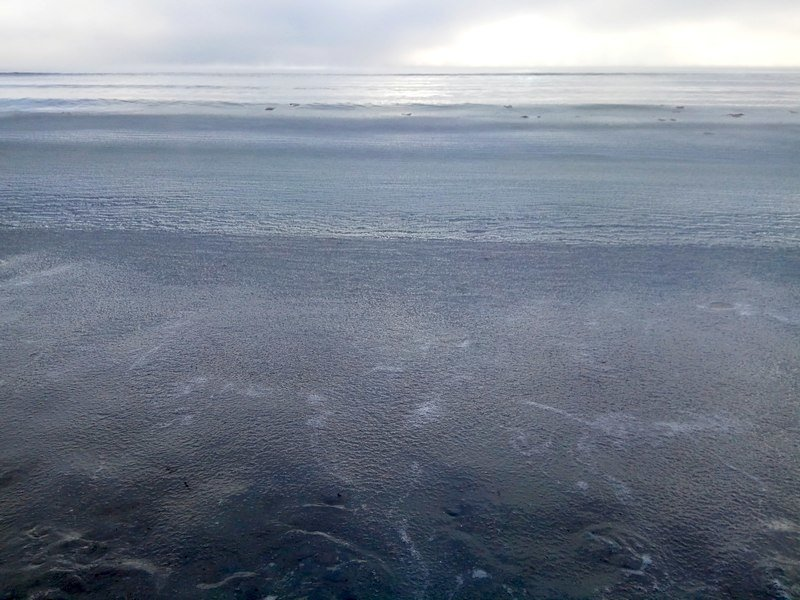 Море в Одессе стало похоже на кипящее молоко (ФОТО), фото-4