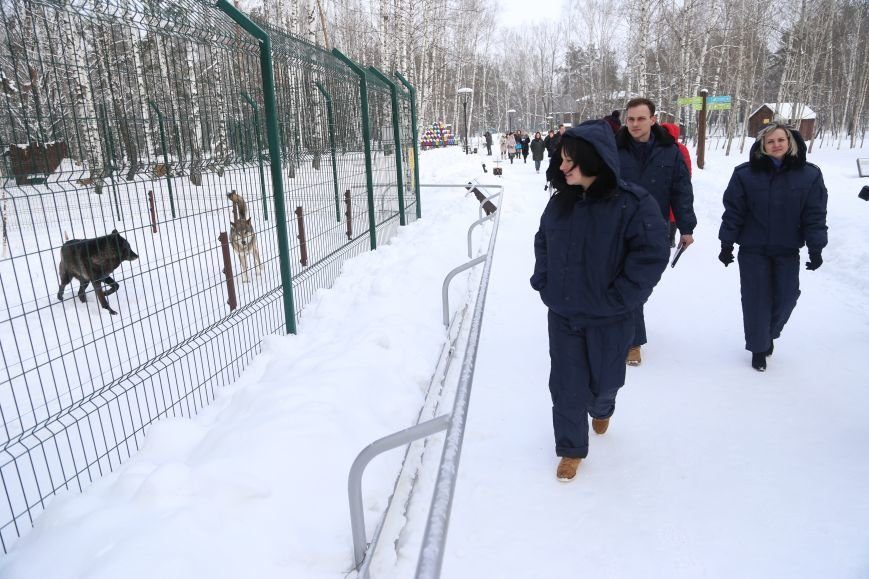 В белгородском зоопарке провели вакцинацию от птичьего гриппа. Фото, фото-1