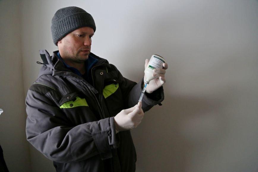 В белгородском зоопарке провели вакцинацию от птичьего гриппа. Фото, фото-2