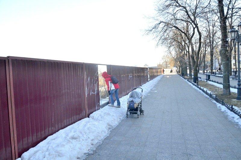 С Приморского бульвара снова видно одесский порт (ФОТО), фото-9