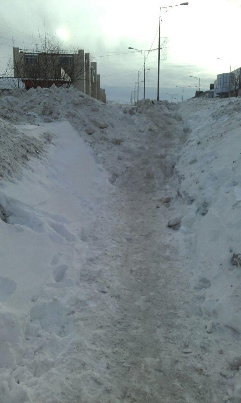 Жители Петропавловска возмущены безобразной расчисткой тротуаров на «красной» линии, фото-2