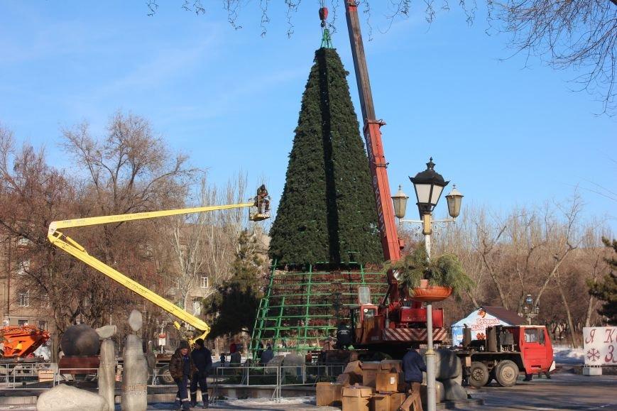 В Запорожье разбирают елку и новогодний городок, - ФОТОРЕПОРТАЖ, фото-7