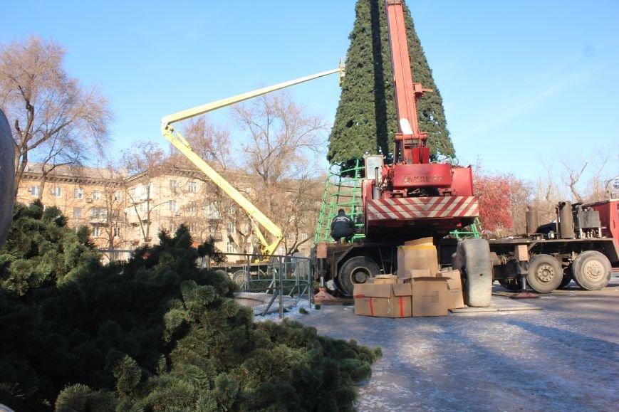 В Запорожье разбирают елку и новогодний городок, - ФОТОРЕПОРТАЖ, фото-9