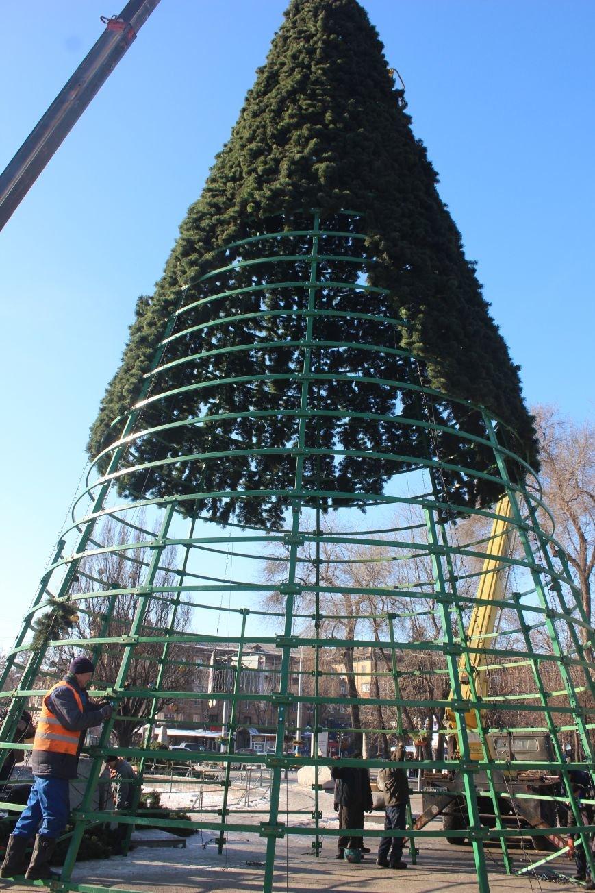 В Запорожье разбирают елку и новогодний городок, - ФОТОРЕПОРТАЖ, фото-10