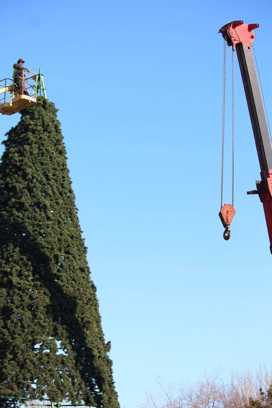 В Запорожье разбирают елку и новогодний городок, - ФОТОРЕПОРТАЖ, фото-16