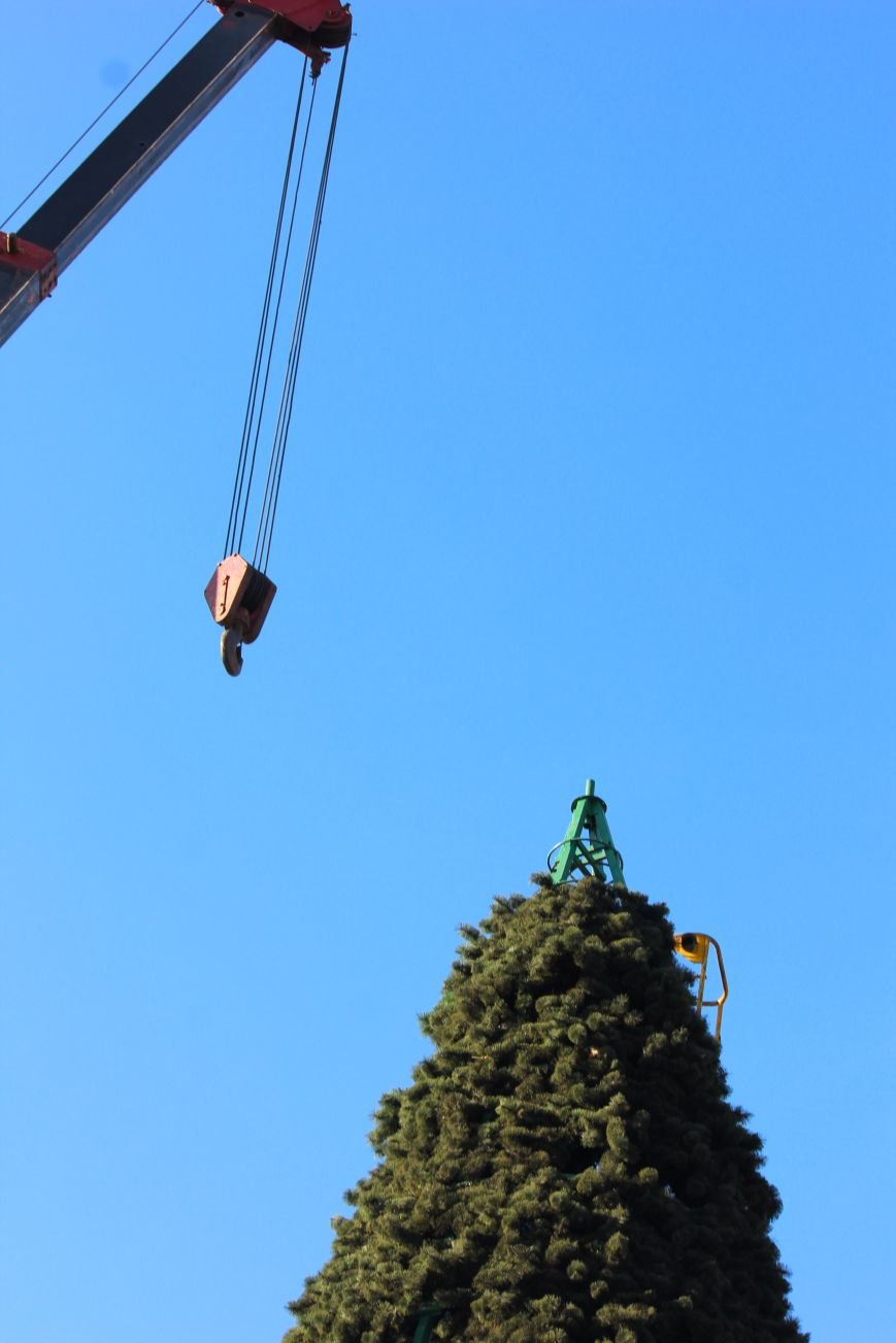 В Запорожье разбирают елку и новогодний городок, - ФОТОРЕПОРТАЖ, фото-11