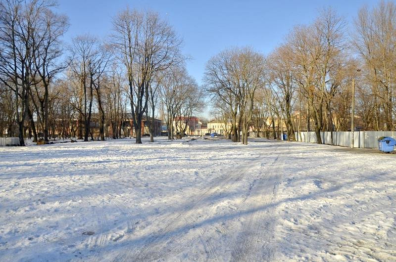 Логово наркоманов в парке не даст покоя одесcитам (ФОТО), фото-6