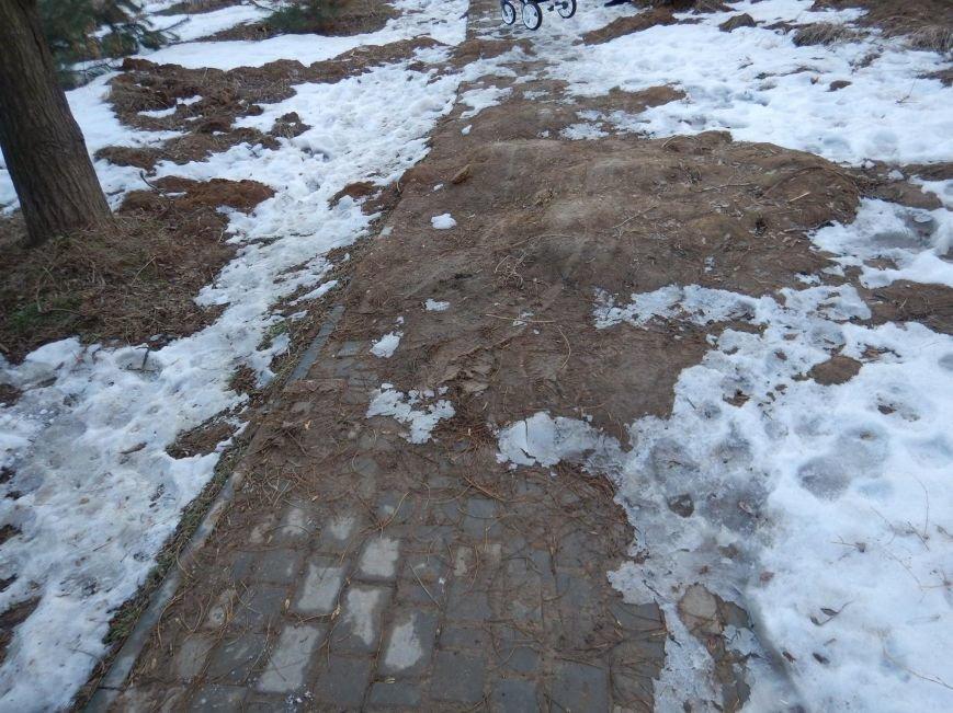 В Одессе зафиксировали масштабный обвал грунта на склонах Трассы здоровья (ФОТО), фото-4