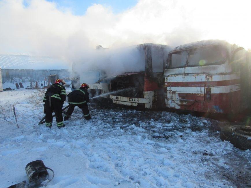 В Лисичанке горели  списанные автобусы, фото-2