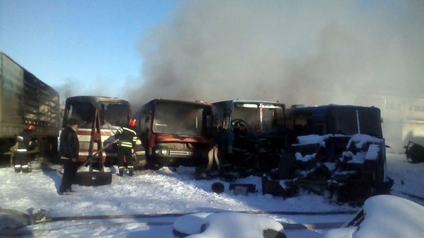 В Лисичанке горели  списанные автобусы, фото-1
