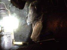 """Украинец пытался провезти через """"Гоптовку"""" тринадцать килограмм наркотиков (ФОТО), фото-1"""