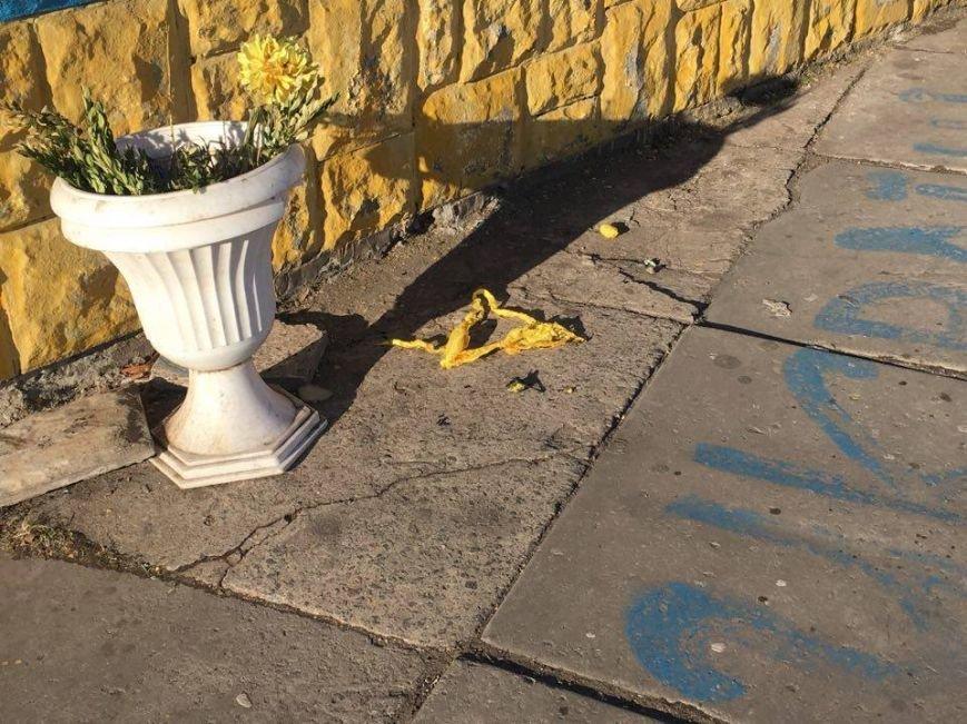 В Кривом Роге сожжение государственного флага Украины будут расследовать как хулиганство (ФОТО, ВИДЕО), фото-2