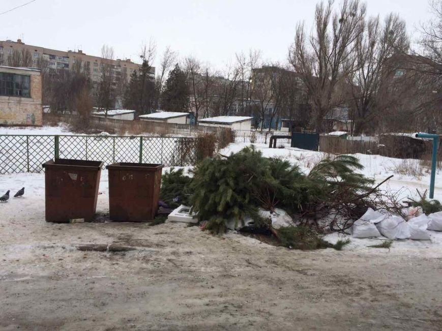 Новомосковск 0569 елки