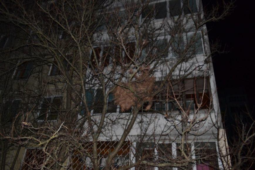 Новомосковск 0569 елка на дереве 2