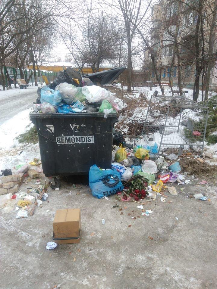 Запорожцы жалуются на горы невывезенного мусора во дворах, - ФОТОФАКТ, фото-1