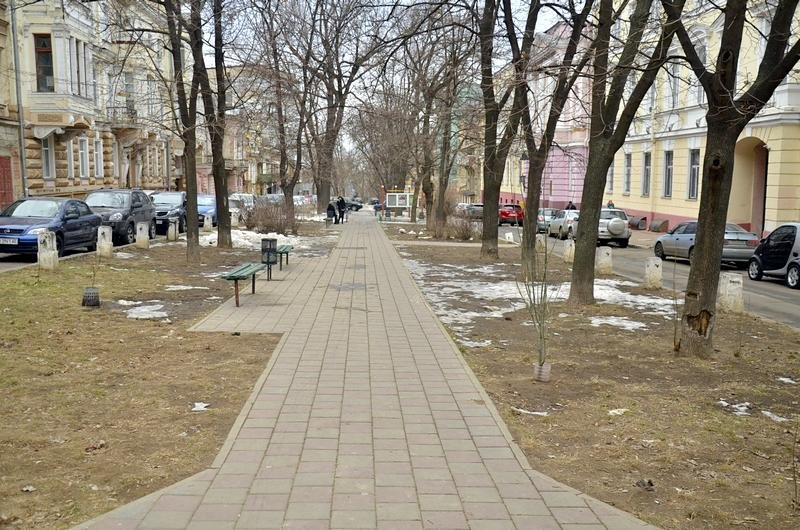 В центре Одессы коммунальщики забросили скверы (ФОТО), фото-9