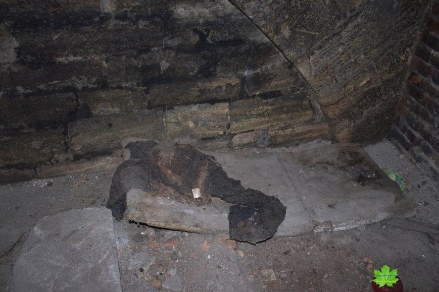 Внутри Потемкинской лестницы нашли гигантскую свалку и чьи-то кости (ФОТО), фото-14