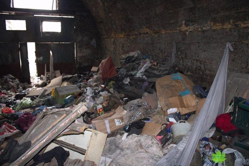 Внутри Потемкинской лестницы нашли гигантскую свалку и чьи-то кости (ФОТО), фото-2