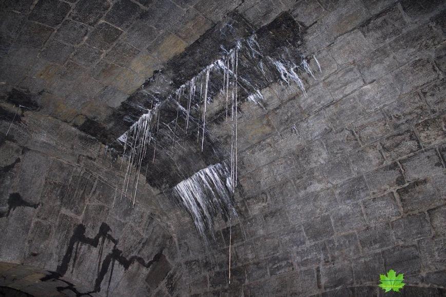 Внутри Потемкинской лестницы нашли гигантскую свалку и чьи-то кости (ФОТО), фото-12