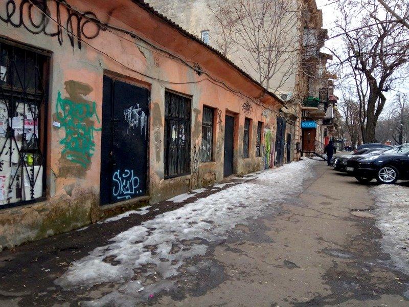 В центре Одессы обнаружили носорога (ФОТО), фото-3