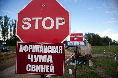 """В Кривом Роге: пропавшего мужчину нашли замерзшим, депутаты провалили обе петиции по """"муниципалам"""", зафиксировали вспышку африканской чумы, фото-2"""