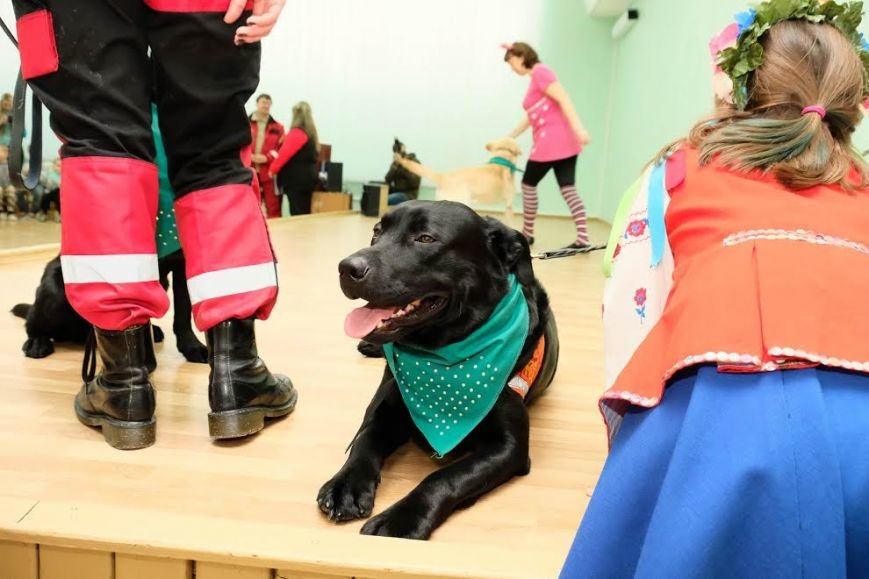 В Днепре собаки-реабилитологи приехали к детям из противотуберкулезного санатория (ФОТО), фото-6