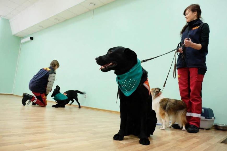 В Днепре собаки-реабилитологи приехали к детям из противотуберкулезного санатория (ФОТО), фото-5