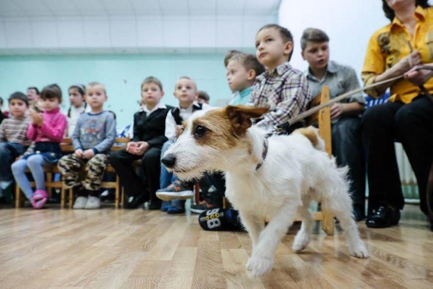 В Днепре собаки-реабилитологи приехали к детям из противотуберкулезного санатория (ФОТО), фото-1