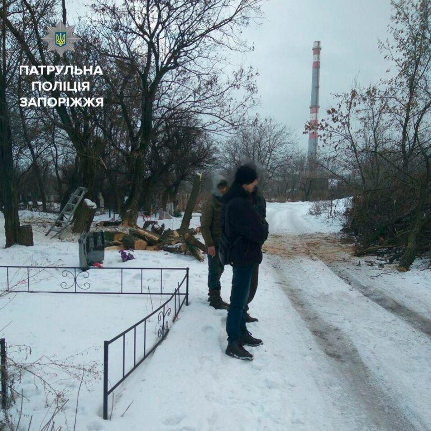 Несколько браконьеров рубили деревья в разных точках Запорожья, - ФОТО, фото-6