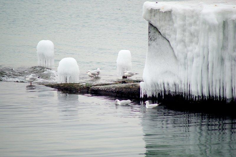 Ланжерон приготовился к выходным: лед ждет одесситов (ФОТО), фото-6
