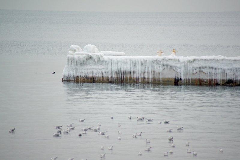 Ланжерон приготовился к выходным: лед ждет одесситов (ФОТО), фото-3