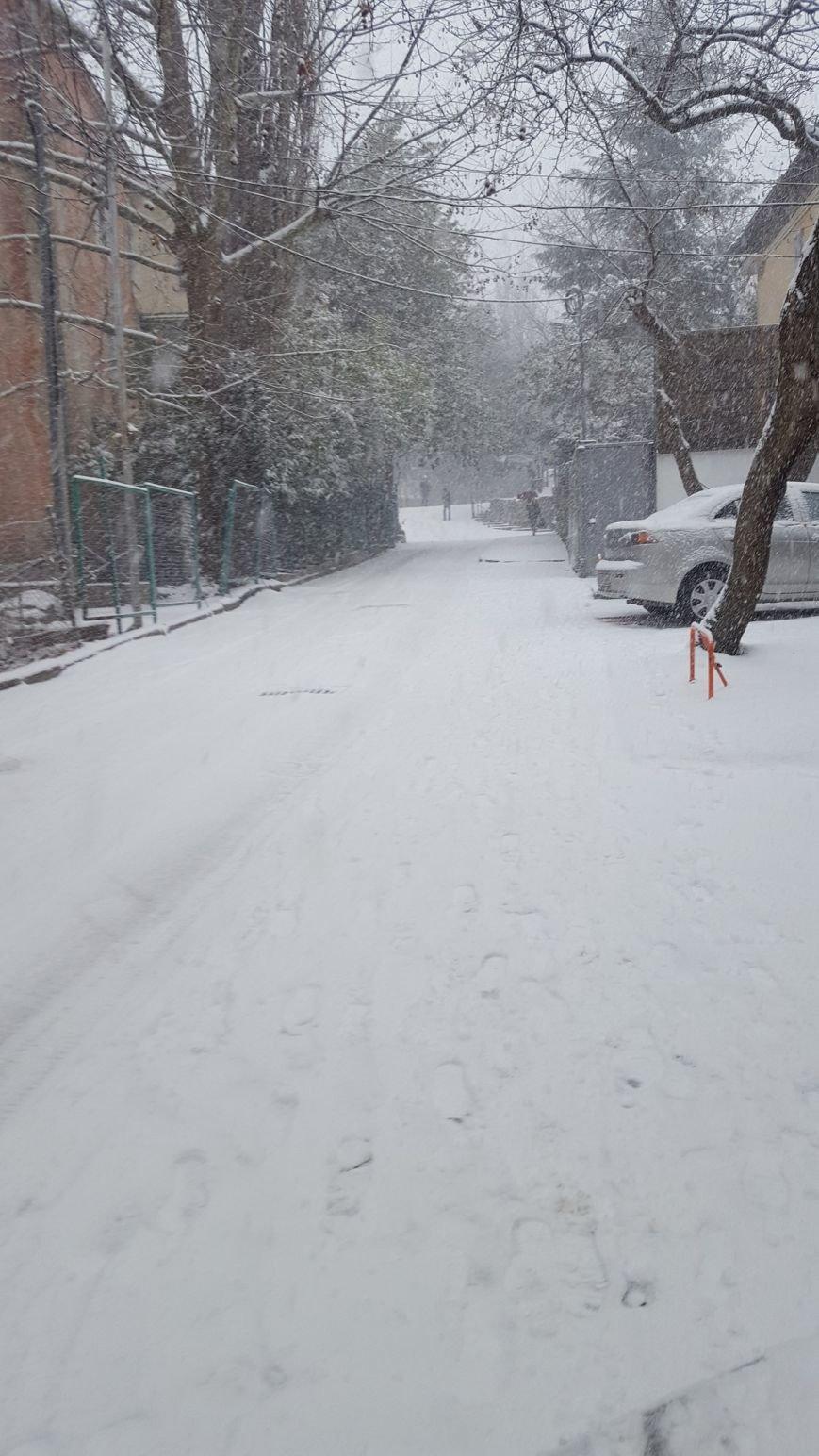 ФОТО: Ялту завалило снегом, фото-31