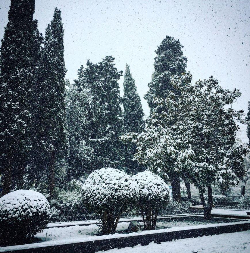 ФОТО: Ялту завалило снегом, фото-28
