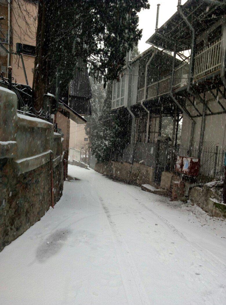 ФОТО: Ялту завалило снегом, фото-23