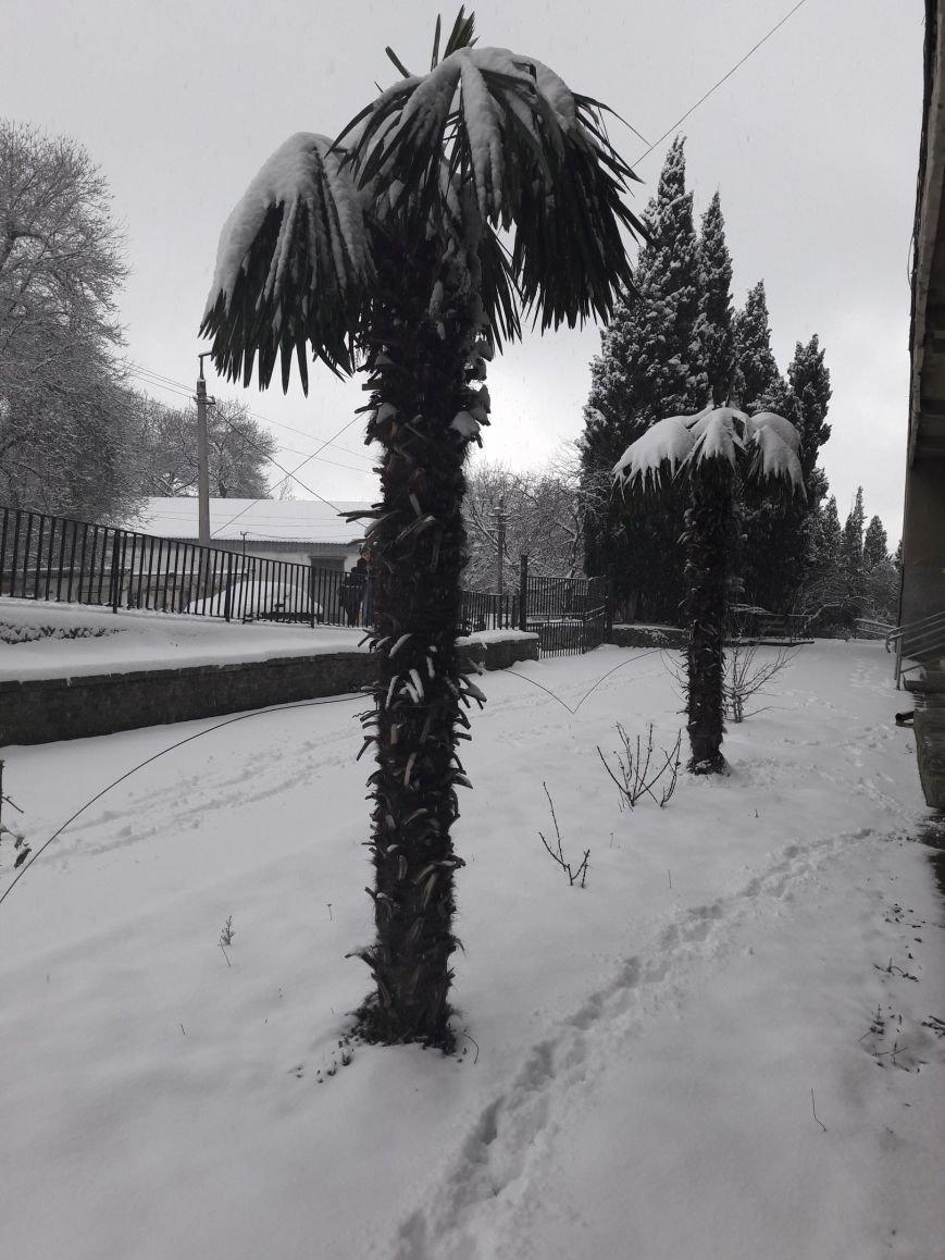 ФОТО: Ялту завалило снегом, фото-35