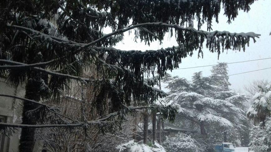 ФОТО: Ялту завалило снегом, фото-15