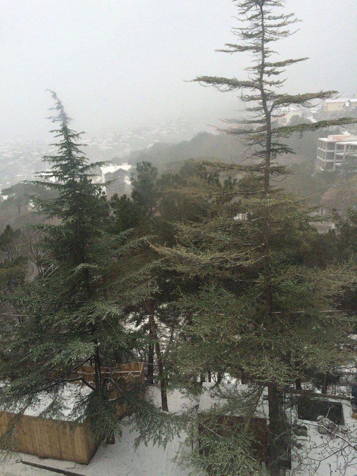 ФОТО: Ялту завалило снегом, фото-22