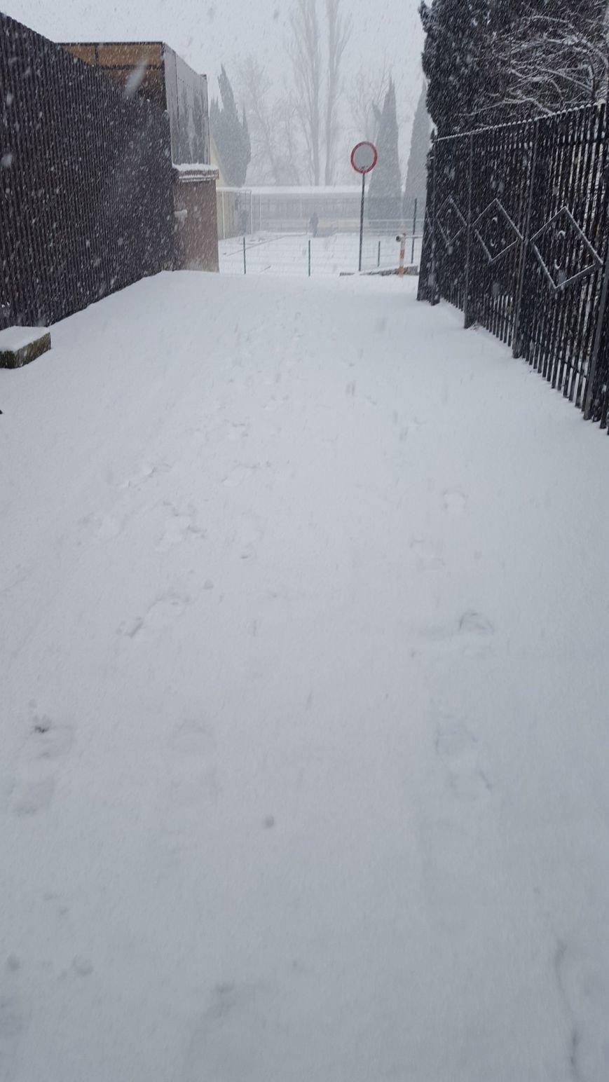ФОТО: Ялту завалило снегом, фото-32