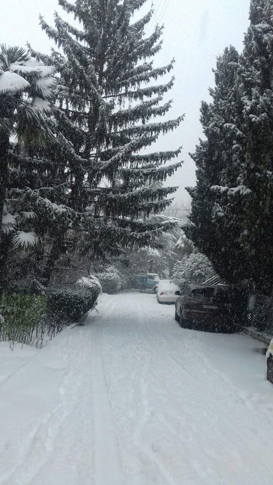 ФОТО: Ялту завалило снегом, фото-14