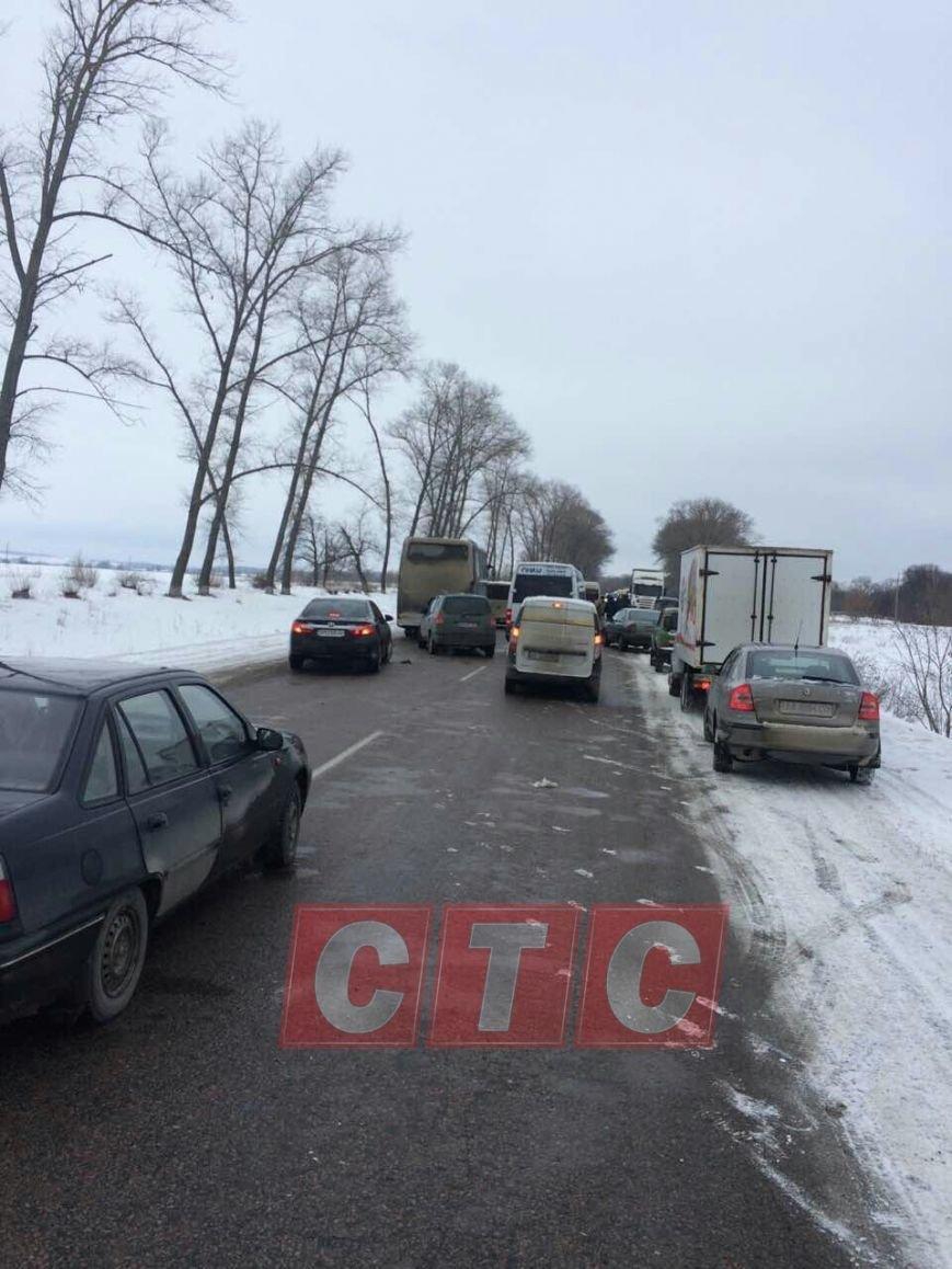 На трассе Киев-Сумы-Юнаковка затор: с дороги слетела фура с коровами (ФОТО), фото-1